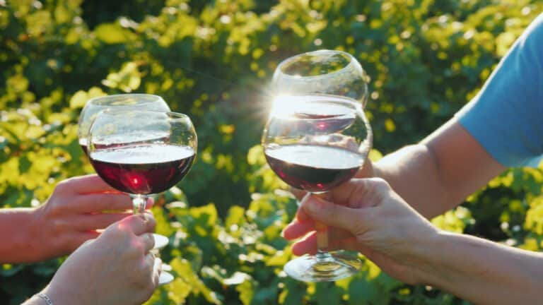 Hire a Private Chauffeur for your Wine Tour